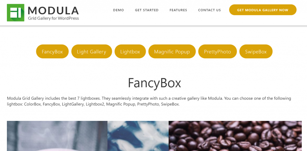 Modula – WordPress Image & Photo Gallery Plugin